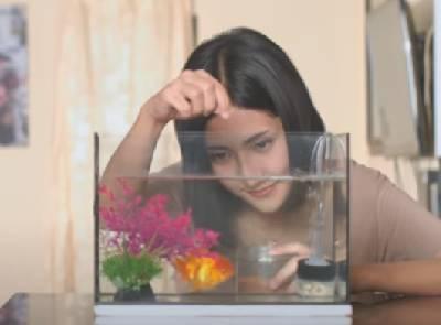 เครื่องช่วยหายใจ - วุฒิ ป่าบอน【OFFICIAL MV】