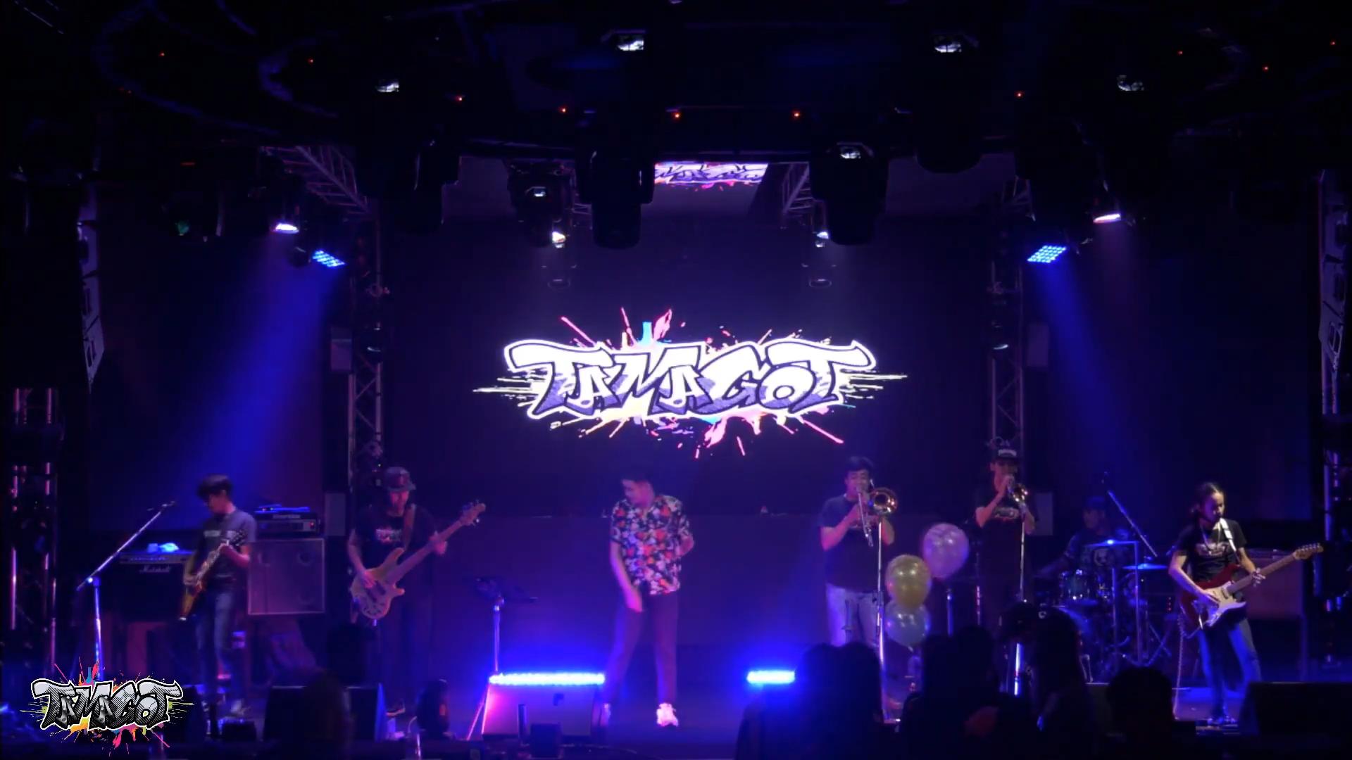 บอกกันตรงๆ - TAMAGOT (Live in 24bar)